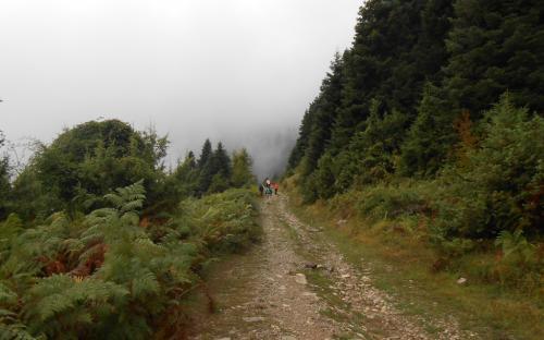 Περπατώντας από τα Επινιανά προς την Αγραπιδιά, υπό βροχή και ομίχλη